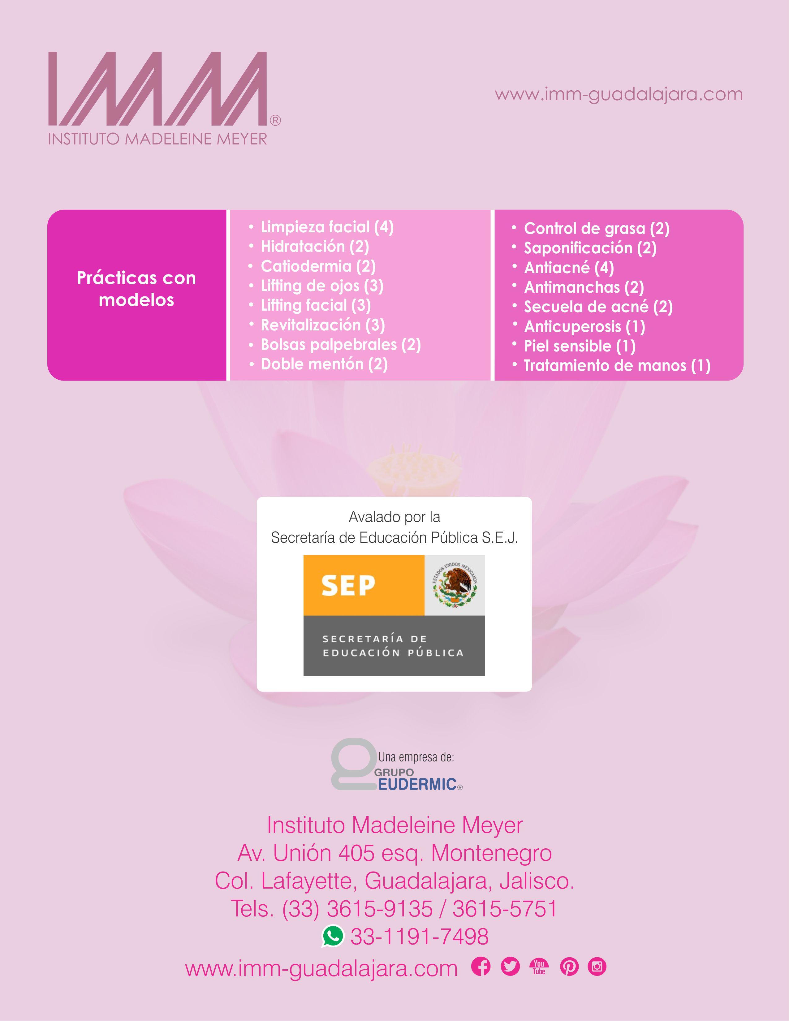 IMM-PlandeEstudios-basico2018-6