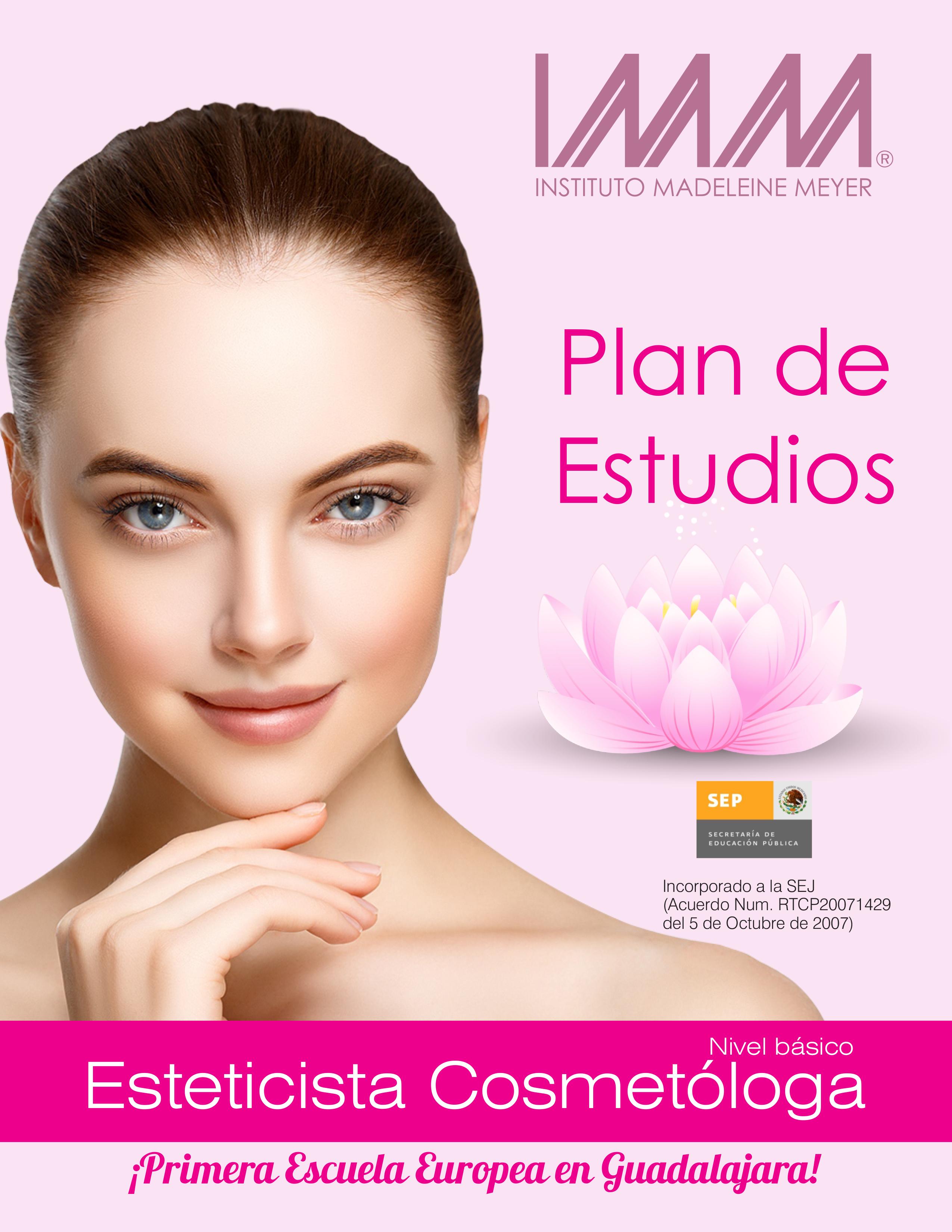 IMM-PlandeEstudios-basico2018-1
